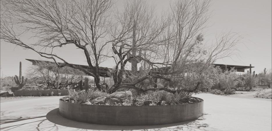 Cavalliere-Round-About-85