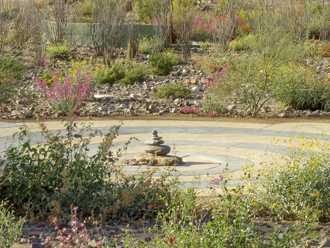 Desert Garden 05