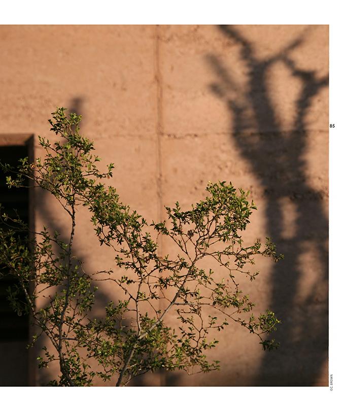 Landscape Design LDW-MMRAC-SWF 06