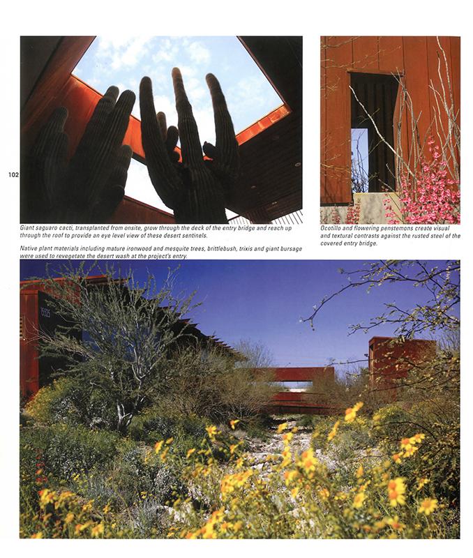 Landscape Design LDW-MMRAC-SWF 12