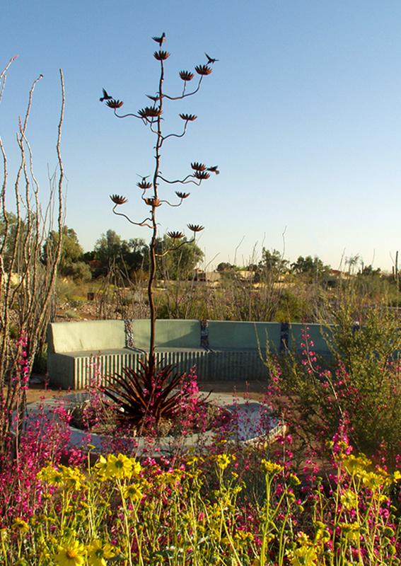 Desert Garden 12