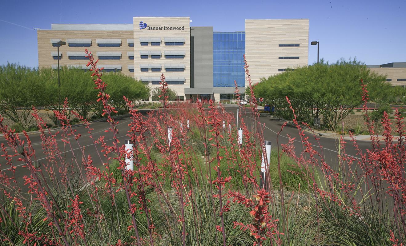 Healing Center 12