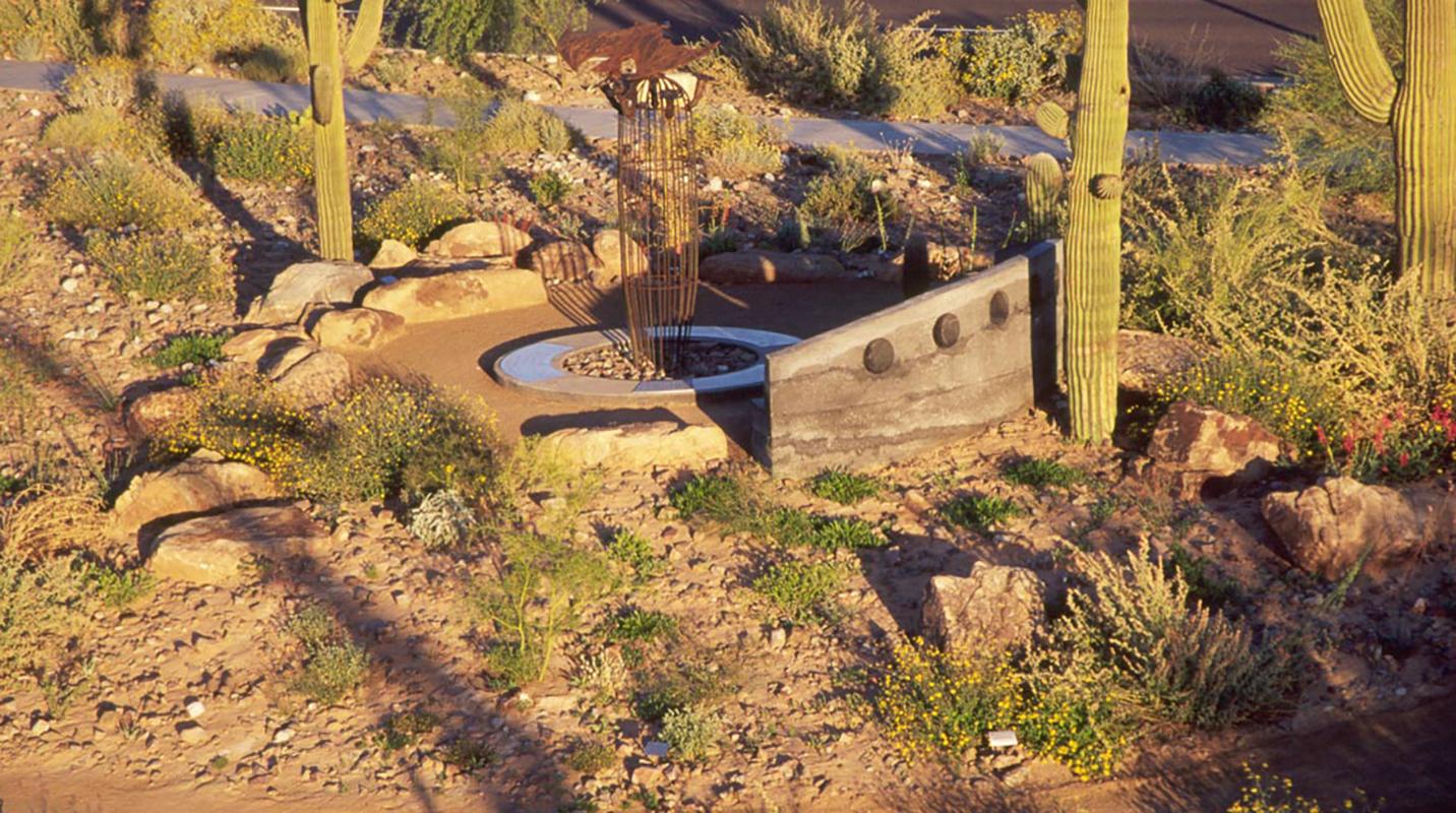 Desert Garden 13