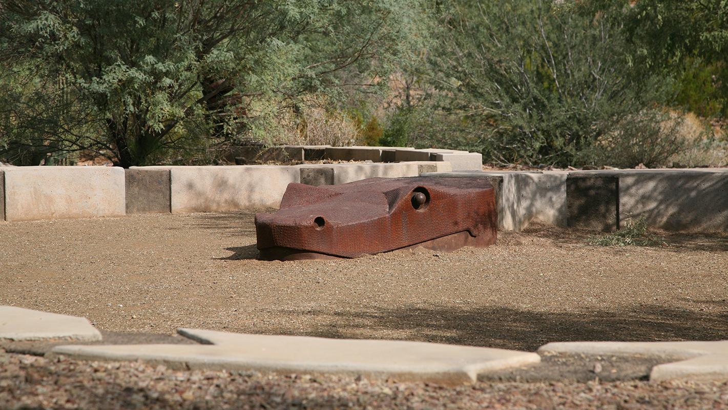 Desert Garden 15
