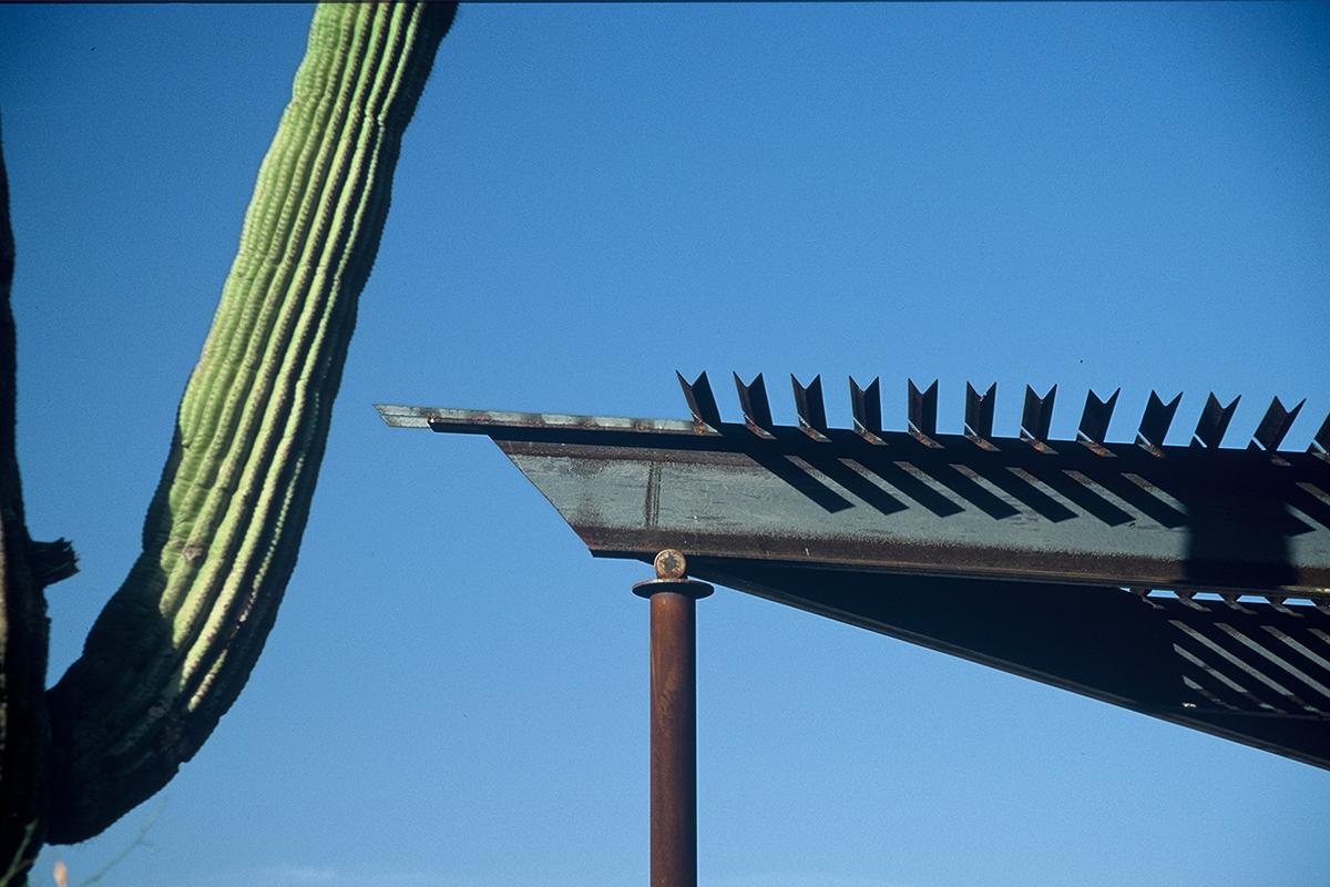 Phoenix Zoo 9
